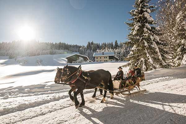 Horse-drawn sleigh rides- © SalzburgerLand-Tourismus-Michael-Großesinger-600